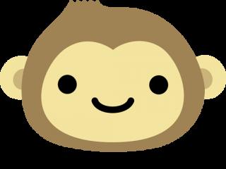 Monkey X Pro